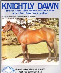 knightly-dawn